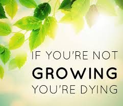 If you're not growing